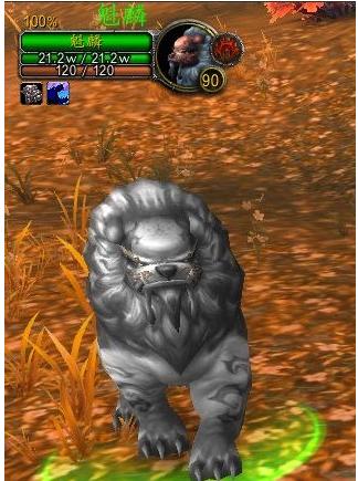 猎人宠物麒麟BUG